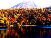 霧島 池(三湖)巡りと白鳥山コース