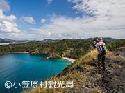山歩き(ハイキング)1日コース